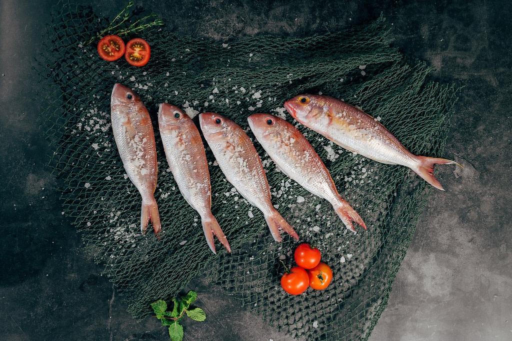 صورة سمك لموضوع أفضل مطعم سمك بجدة